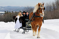 Celebrating a winter wedding with a horse drawn sleigh ride