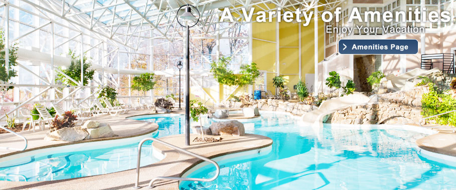 Steele Hill's 45,000 gallon indoor pool is one of many amenities on the property